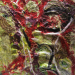 Primavera 4 2013-05-22 19.34.35