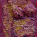 12_Michelle_ Fertility Figurine Quinacrinone Crimson, Mnajdra Temple, Malta 12x6 DSC_2736