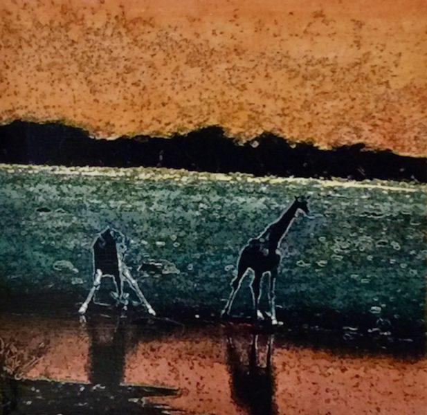Etosha Park, Giraffes at waterhole 2