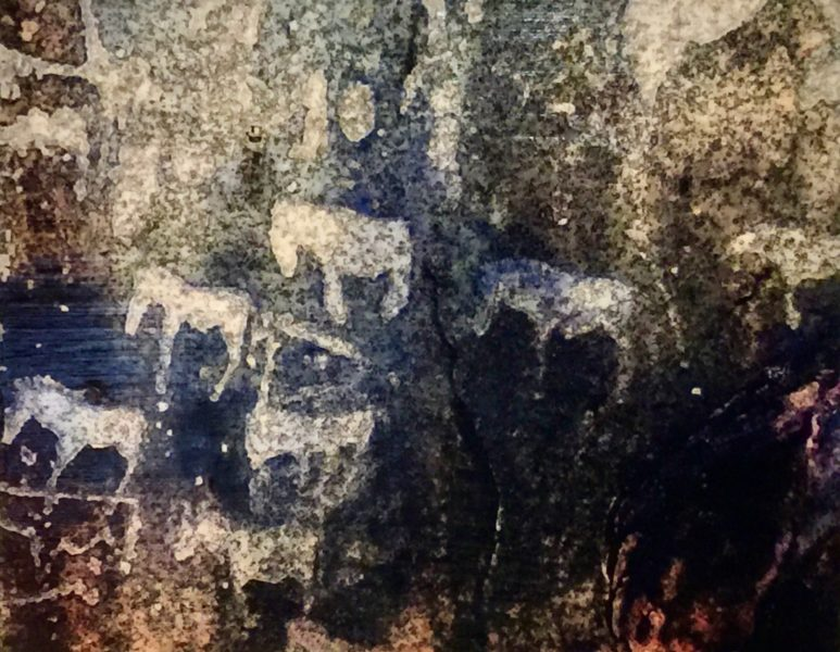 Twyfelfontein Petroglyph 3