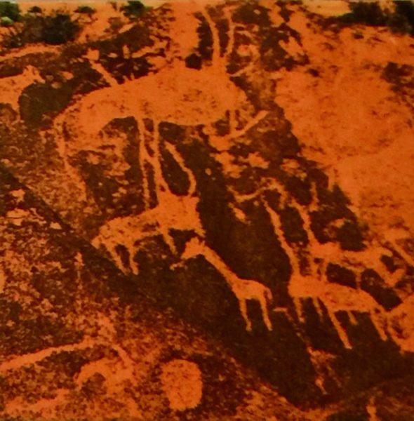Twyfelfontein Petroglyph 6