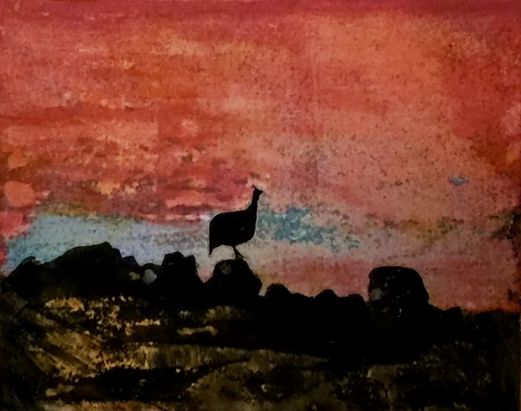Twyfelfontein, Guinea Fowl at Sunset