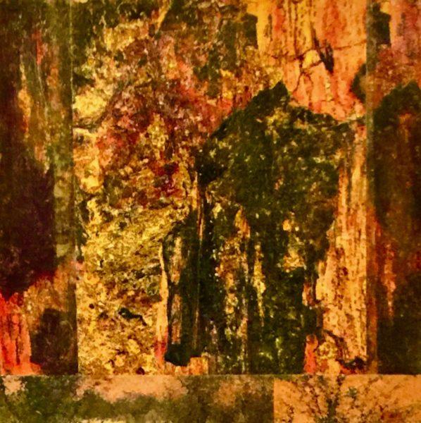 Petrified Forest, Twyfelfontein