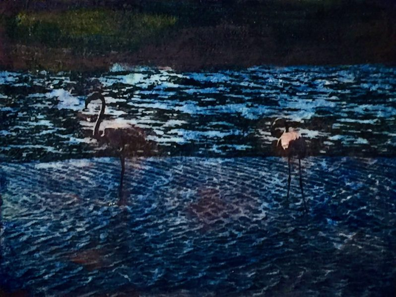 Walvisbaai, Two Flamingos
